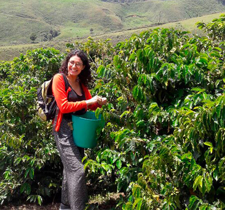 coffee andes mountains tour