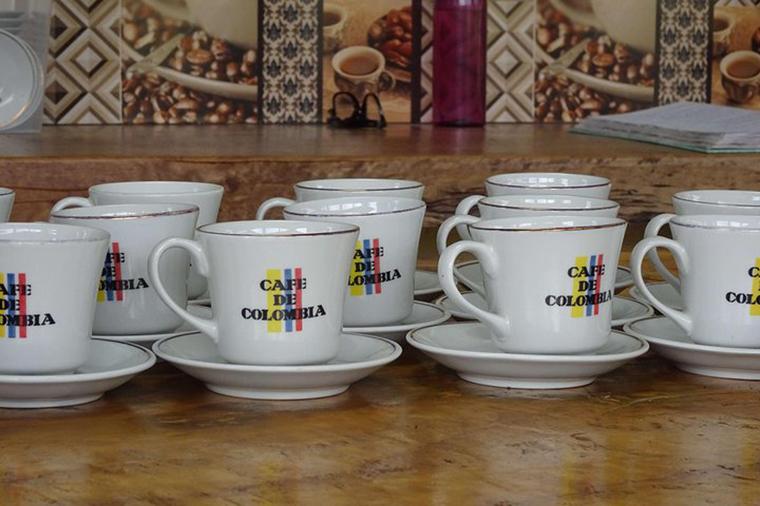 Cata de café On-line